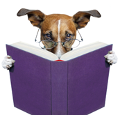 photo of dog reading book